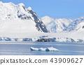 南極 雪山 冰川 43909627