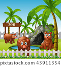 A bear family in the zoo 43911354