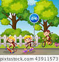 Monkey riding a bicycle and skateboard 43911573