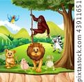 Wild animals in the jungle 43911651