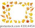 秋天秋葉水彩調味汁,秋天背景 43914454