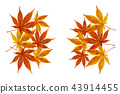 秋天秋葉水彩調味汁,秋天背景 43914455