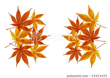 가을 낙엽 수채화 소스, 가을 배경 43914455