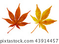 秋天秋葉水彩調味汁,秋天背景 43914457