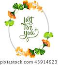 Colorful leaves ginkgo. Leaf plant botanical garden floral foliage. Frame border ornament square. 43914923