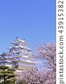 ปราสาท Himeji และดอกซากุระ 43915382