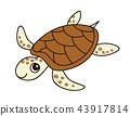 爬行動物 爬蟲類的 海龜 43917814