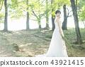 穿著婚禮禮服的新娘 43921415