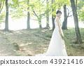 穿著婚禮禮服的新娘 43921416