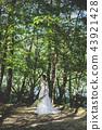 穿着婚礼礼服的新娘 43921428
