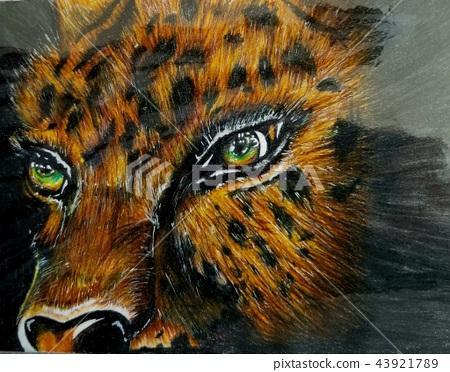 Tiger color 43921789