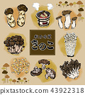 Autumn taste mushroom illustration set 43922318