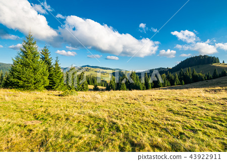 beautiful landscape of Apuseni mountains in autumn 43922911