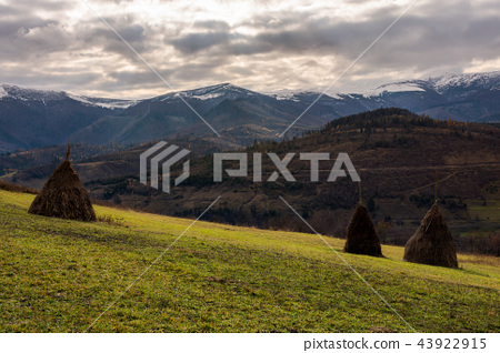 haystacks on the hill 43922915
