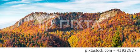 panorama of Pietrele Negre rocks in Arieseni 43922927