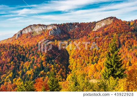 Pietrele Negre rock formation in Arieseni 43922928