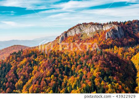 Pietrele Negre rock formation in Arieseni 43922929