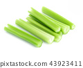 Fresh green celery leaves vegetable isolated  43923411