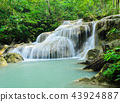 Tropical rain forest waterfall 43924887