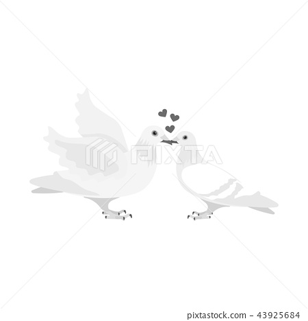 Two funny monochrome pigeons illustration. White doves with a heart. A symbol of love for the bride 43925684