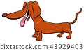dachshund dog cartoon animal character 43929403