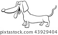 dachshund dog character cartoon coloring book 43929404