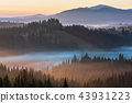 Early morning misty autumn Carpathian mountains 43931223