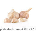 Garlic isolated on white background 43935373