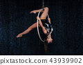 A young girl performs the acrobatic elements in the aerial hoop. Black Aqua Studio 43939902