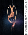 A young girl performs the acrobatic elements in the aerial ring. Aqua Studio shooting performances 43939937