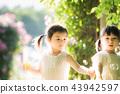 女孩兒童花園樹木園上升了 43942597
