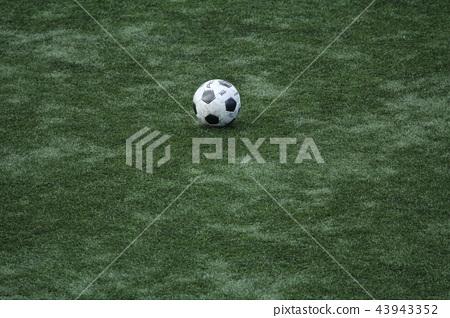 축구 축구 43943352