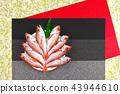 Acanthus(Nodogro) 43944610