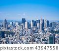東京都市形像新宿子中心區域 43947558