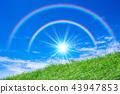 สายรุ้งในทุ่งหญ้าและดวงอาทิตย์ 43947853