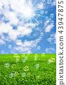 ฟองสบู่ในทุ่งหญ้าและท้องฟ้าสีฟ้า 43947875
