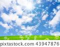 ฟองสบู่ในทุ่งหญ้าและท้องฟ้าสีฟ้า 43947876