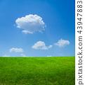 ทุ่งหญ้าและท้องฟ้าสีคราม 43947883