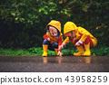 happy children boy and girl on autumn walk 43958259
