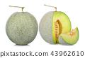 melon on white background 43962610