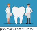 Male and female dentist standing with big tooth 43963510