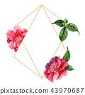 flower background frame 43970687