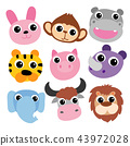 animals  head vector design 43972028