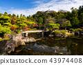 Koko-en Garden with Himeji castle in autumn 43974408