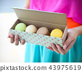 Girl holding colorful French macaroons in hands 43975619