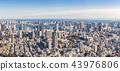 Tokyo Japan 43976806