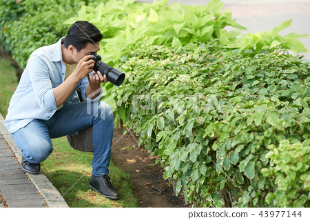 Photographing nature 43977144