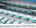printing banknote money 43978365