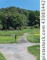 農村風景早期的秋天鄉下公路 43983442