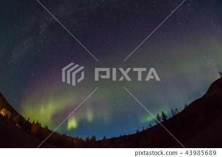 Aurora Aurora in the fall of 2018 Aurora Alaska 2018 autumn 43985689